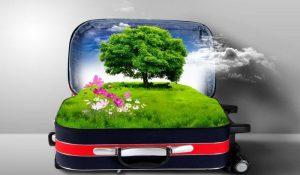چگونه یک مسافر سبز باشیم